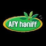afyhanif web design malaysia